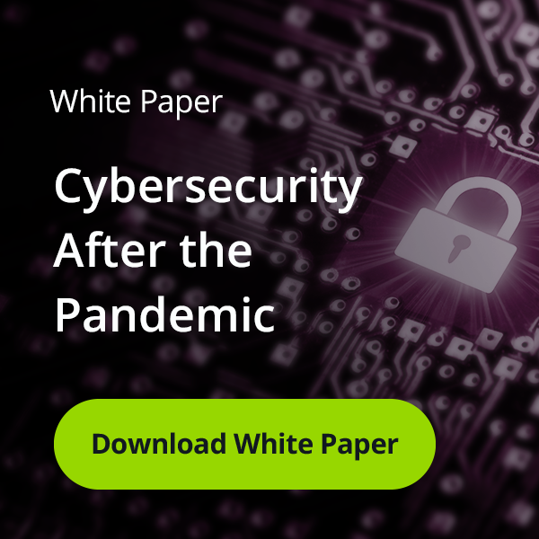 Cyber Security After the Pandemic