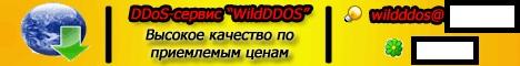 WildDDOS