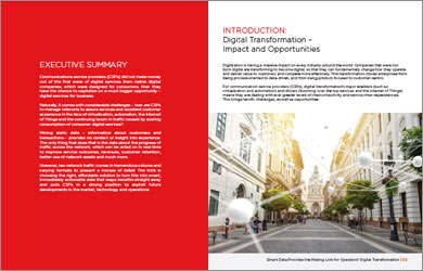 Whitepaper: Provides the Missing Link for Operators' Digital Transformation