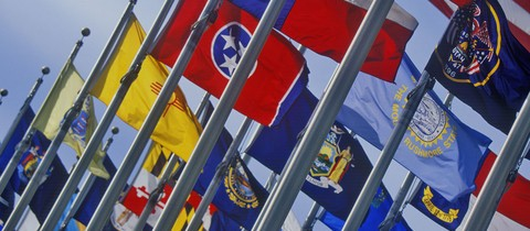 State flags on flagpoles lined up together
